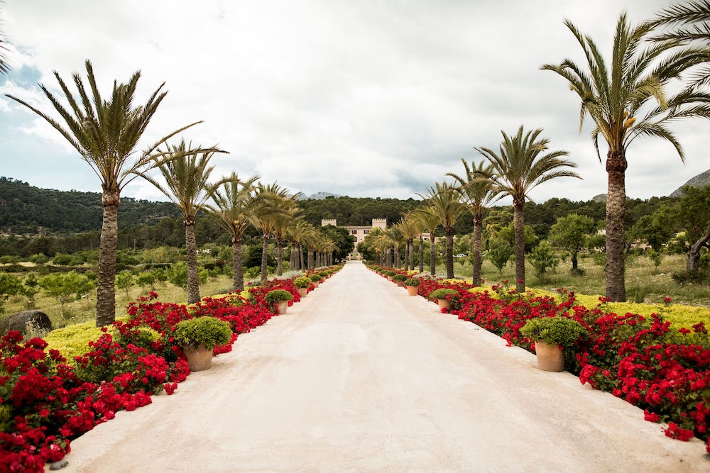 wedding hotel location with great catering in the nature of Andratx