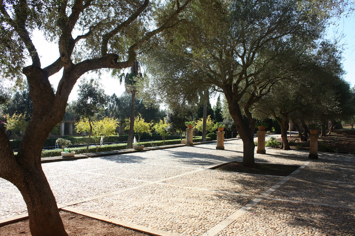 Son Doblons Spain location wedding and event Mallorca