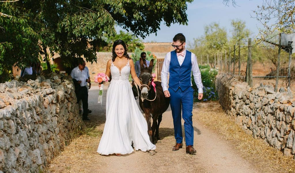 Pets for wedding ceremony in Mallorca