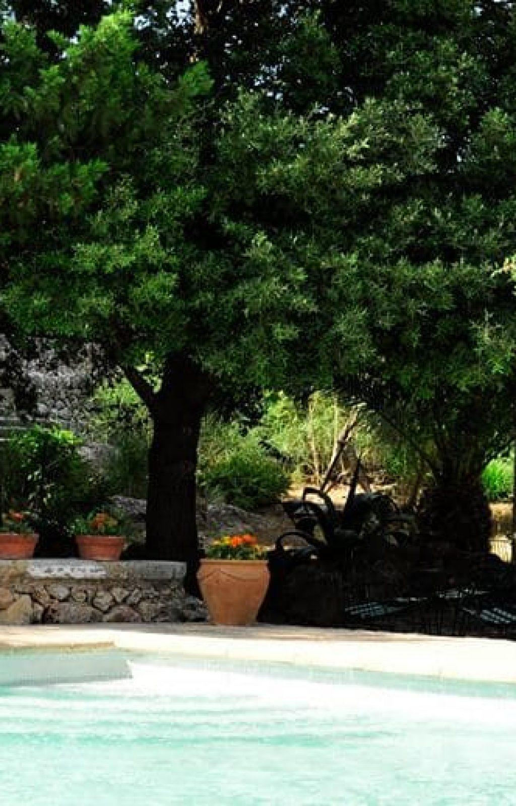 Evento en la naturaleza de Mallorca