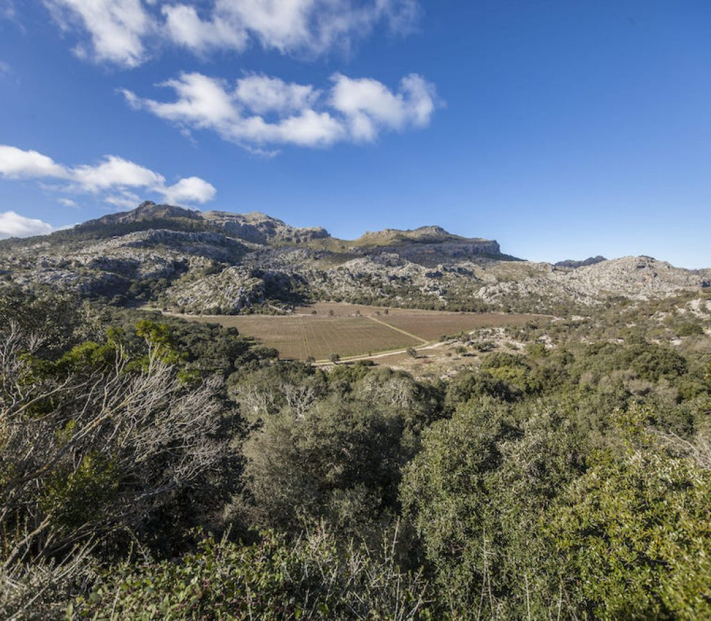 Mortitx Serra de Tramuntana wedding and event